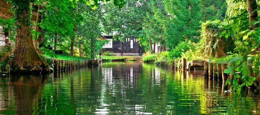Hauptmerkmal ist die natürliche Flusslaufverzweigung der Spree, die durch angelegte Kanäle deutlich erweitert wurde. Als Auen- und Moorlandschaft besitzt sie für den Naturschutz überregionale Bedeutung und ist als Biosphärenreservat geschützt. Der Spreewald als Kulturlandschaft wurde entscheidend durch die Sorben geprägt. Das Gebiet ist eines der bekanntesten und beliebtesten Reiseziele im Land Brandenburg.